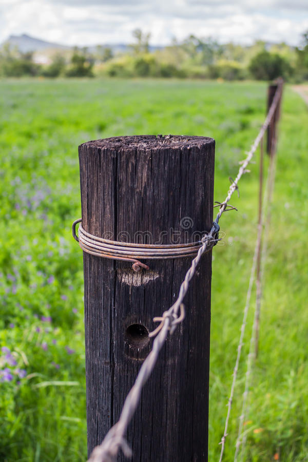Free One Weather Beaten Wood Fence Pole Stock Photography - 86568732