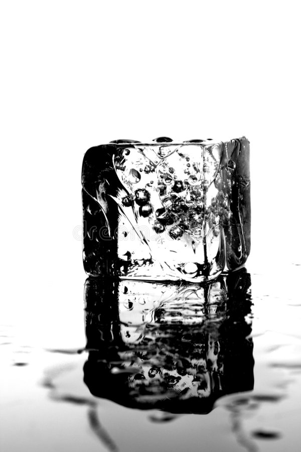 One Wet Ice Cube royalty free stock photos