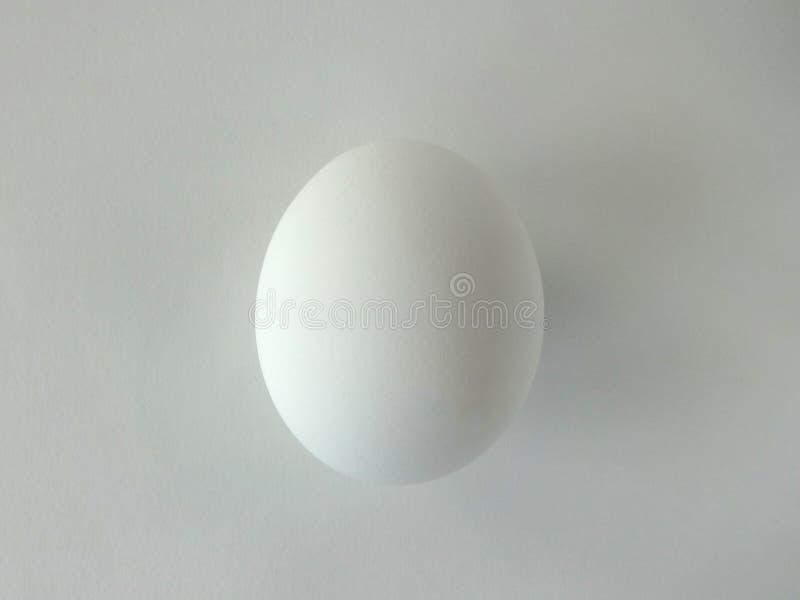 One White Egg. Single White Egg Against White Background royalty free stock image