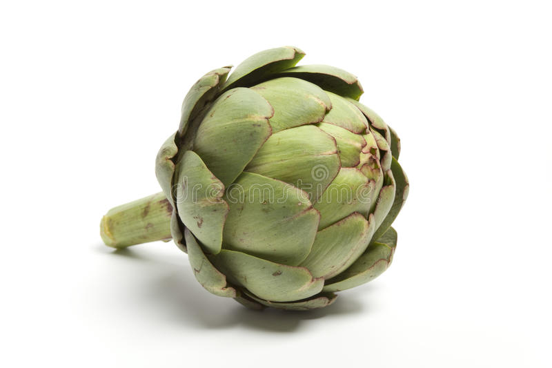 One whole fresh artichoke. On white background stock image