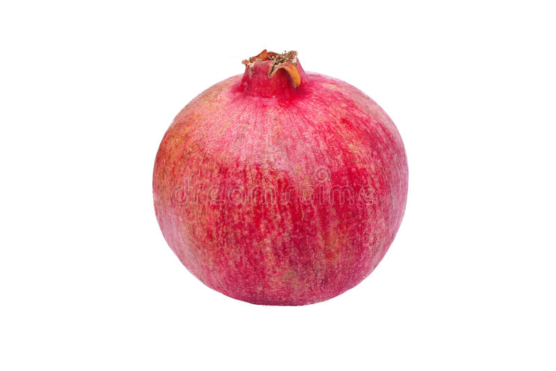 One whole pomegranate stock image