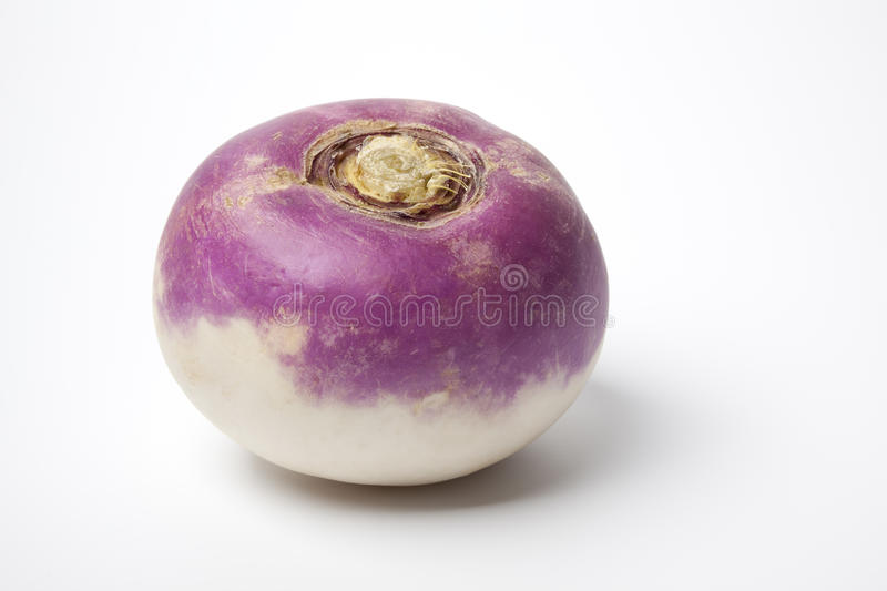 One whole purple headed turnip royalty free stock images