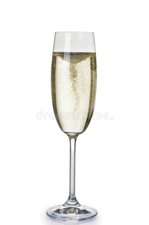 One wineglass of champagne royalty free stock photo
