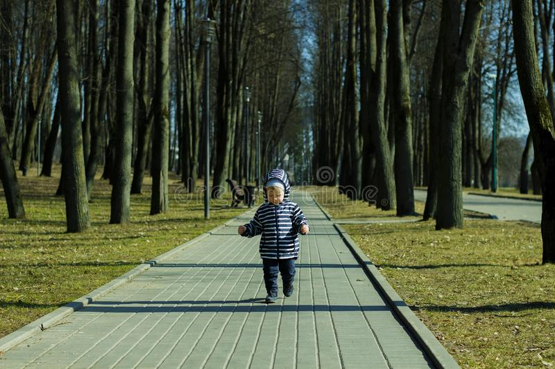 A one year old baby boy taking some of his first steps outdoors in spring park. Cute toddler walking in the green forest. In autumn stock images
