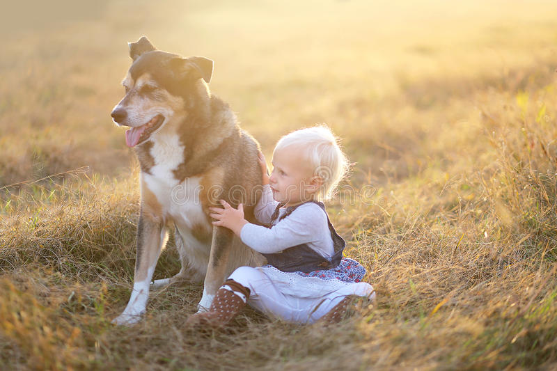 One Year Old Baby Lovingly Holding Her Pet German Shepherd Dog. A sweet one year old baby girl is reaching up and hugging her rescued German Shepherd mix breed royalty free stock photo