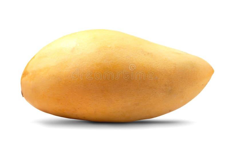 Download Yellow mango stock image. Image of tropical, sweet, yellow - 30115513