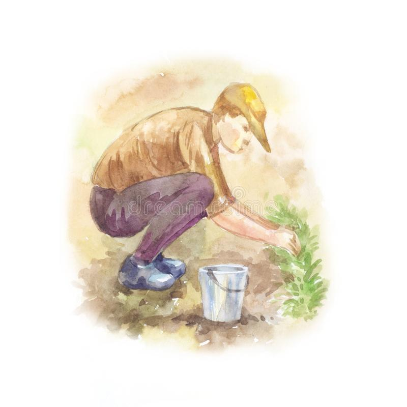 One young guy working in the garden. Watercolor light colouring. Illustration. Sketch of gardener with bucket royalty free illustration