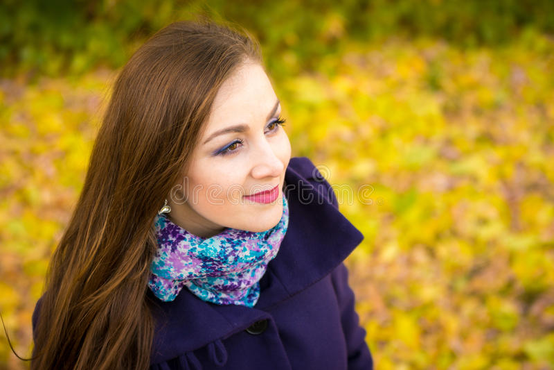 Oneffenheids mooi meisje op de onscherpe achtergrond van de herfstbladeren stock afbeelding