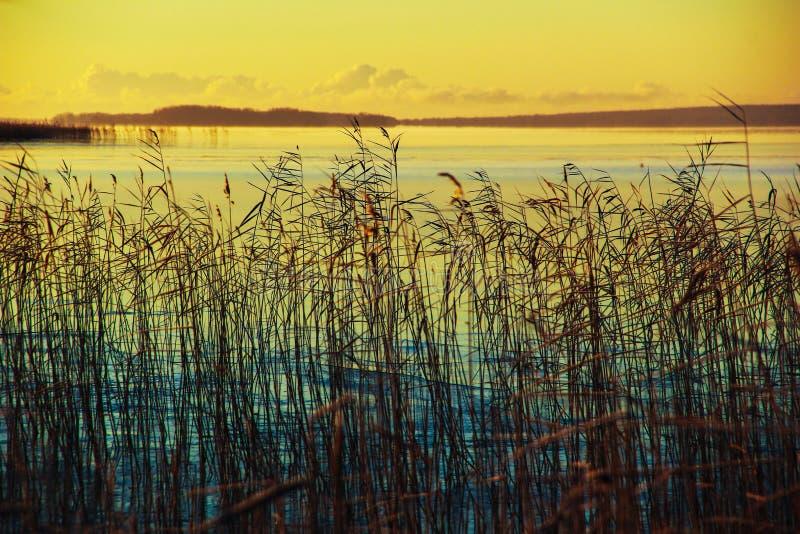 Onego sjö royaltyfri foto