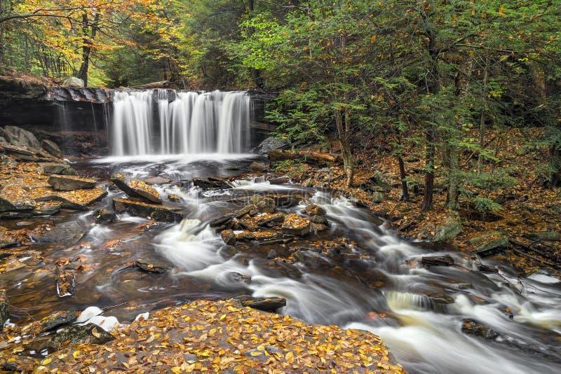 Oneida Falls Autumn - Ricketts dalgång royaltyfri fotografi