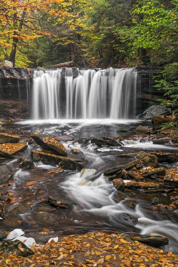 Oneida Falls Flow arkivbilder