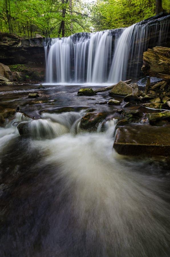 Oneida Falls Ricketts Glen State Park, PA royaltyfri foto