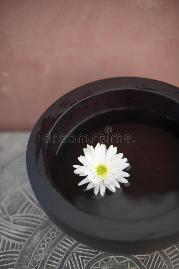 Download Oneness Royalty Free Stock Photography - Image: 28977907