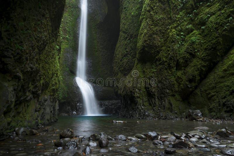 Oneonta inférieur tombe cascade située dans la gorge occidentale, Orégon images stock
