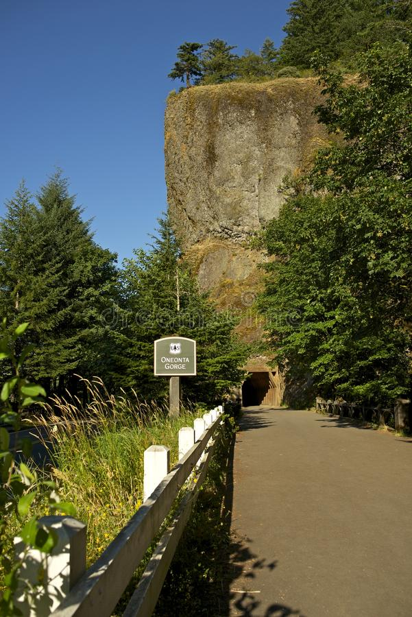 Oneonta-Schlucht-Tunnel stockfotos