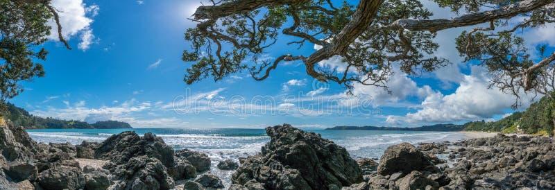 Onetangi strandWaiheke ö Nya Zeeland royaltyfria bilder