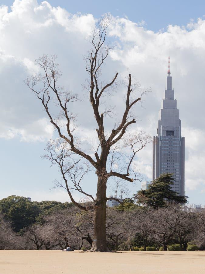 Ongebruikelijke landschappen Tokyo royalty-vrije stock afbeelding