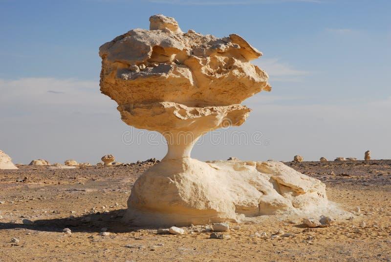 Ongebruikelijke rots in de woestijn royalty-vrije stock foto's