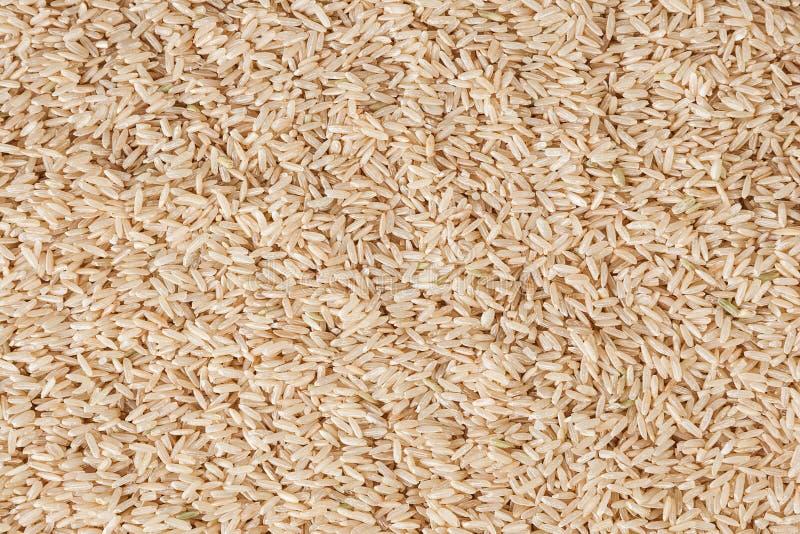 Ongekookte ongepelde rijstachtergrond royalty-vrije stock foto's