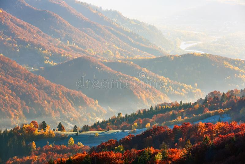 Ongelooflijk landschap met groen gras in het berijpen royalty-vrije stock afbeelding