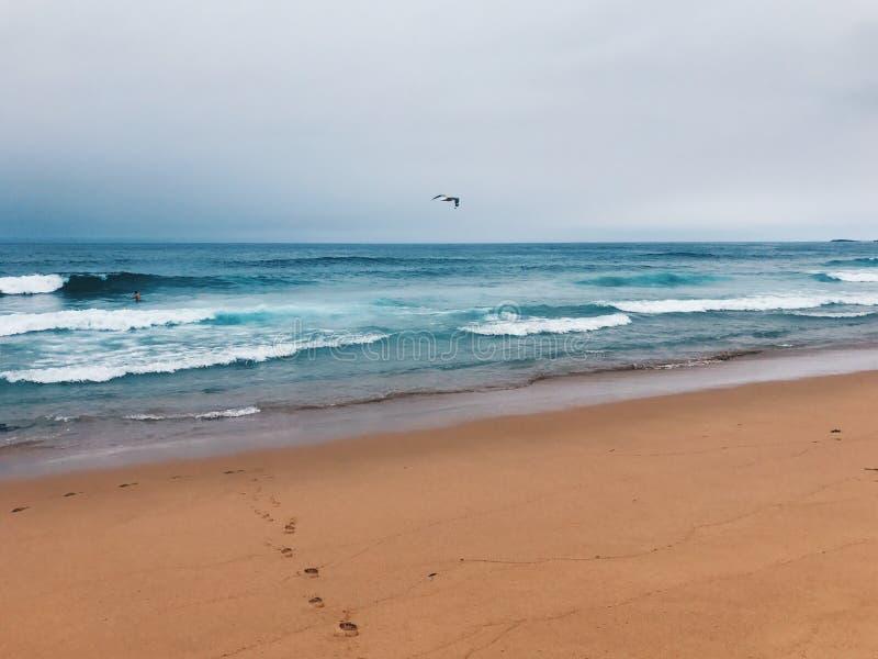Ongelooflijke mening Overzeese Mening Australisch Strand voetstappen stock fotografie