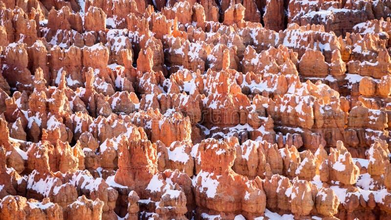 Ongeluksboden met sneeuw, Bryce Canyon National Park stock afbeelding