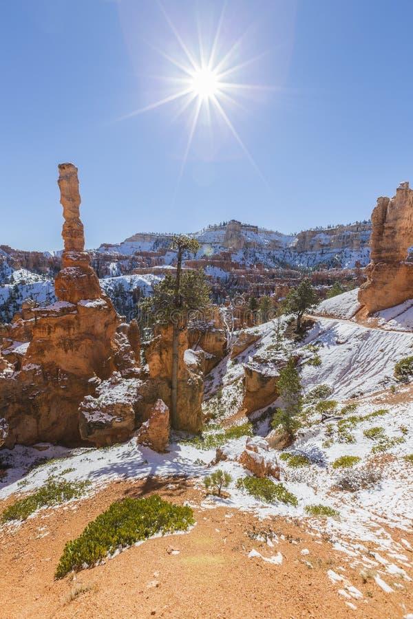 Ongeluksboden, Zon en Sneeuw in Bryce Canyon National Park royalty-vrije stock fotografie
