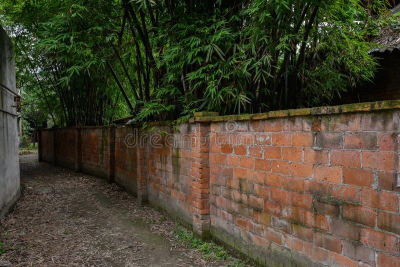 Ongeplaveid voetpad langs red-brick bijlage stock foto