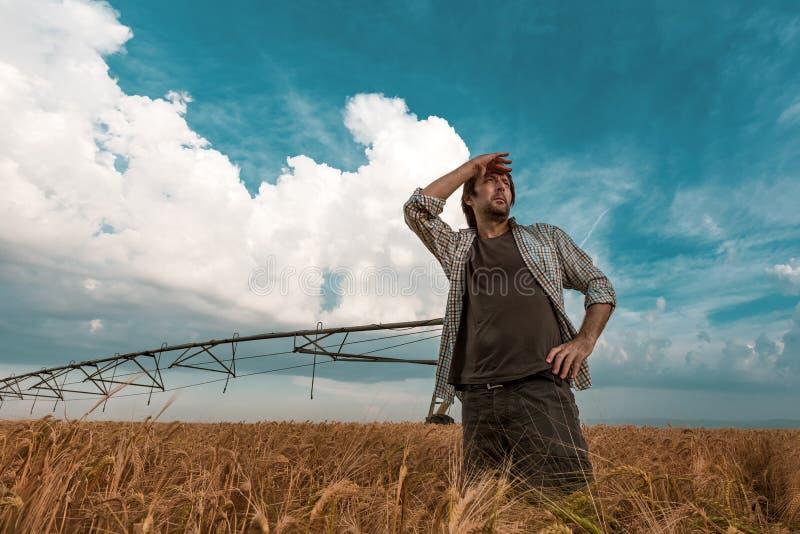 Ongerust gemaakte landbouwer op gerstgebied op een winderige dag stock foto