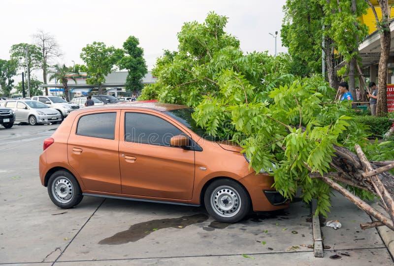 Ongevallen door onweren en regen worden veroorzaakt die