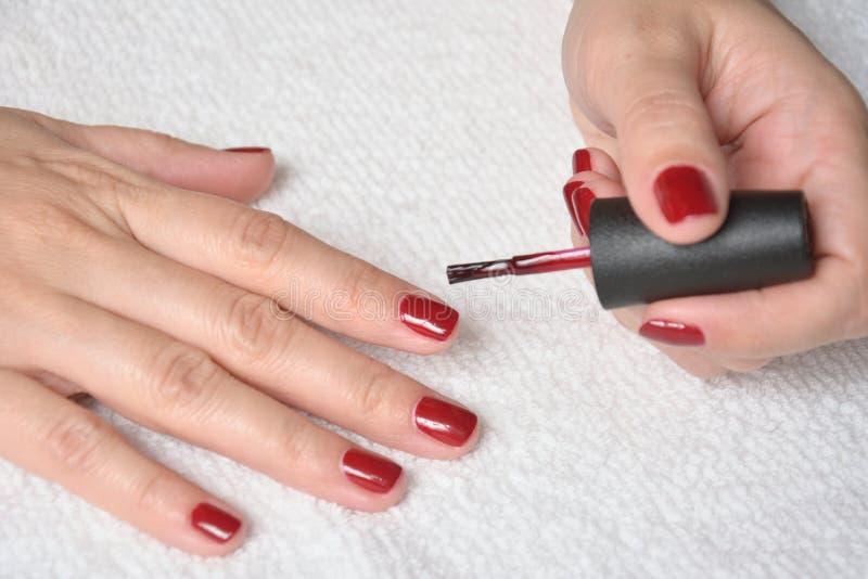 Ongles de peinture avec le vernis à ongles rouge photo libre de droits