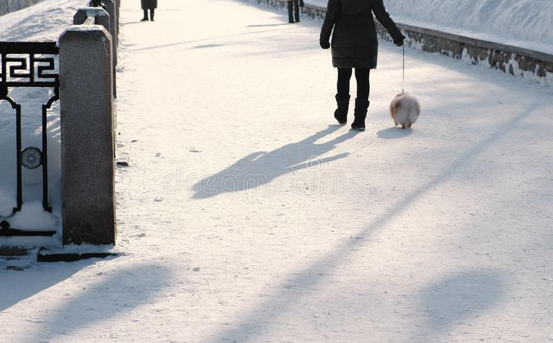 Onherkenbare vrouw die met een kleine hond op een leiband in een snow-covered de winterpark lopen Achter mening stock foto
