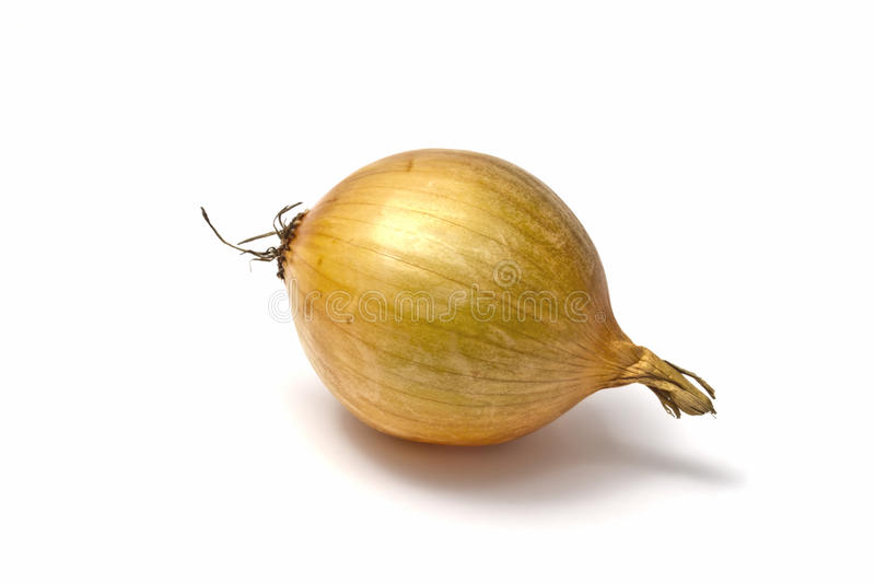 Download Onion stock photo. Image of natural, plant, group, organic - 18309540