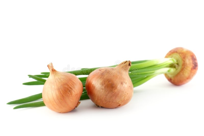 Onion. Bulbs over white background stock image