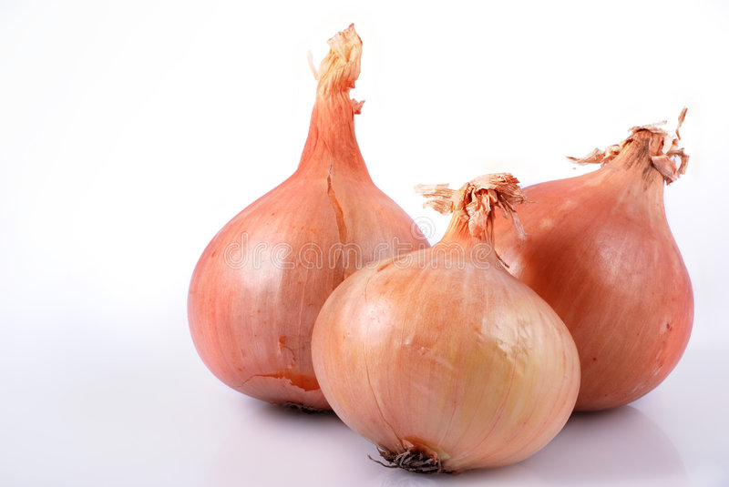 Onion. A few onion on bright background royalty free stock photo