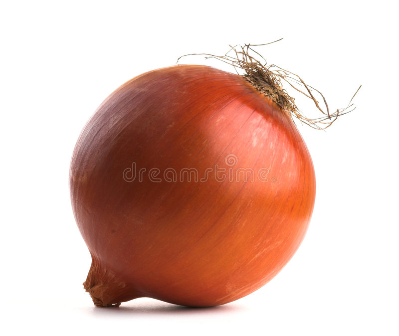 Download Onion Royalty Free Stock Images - Image: 3569939