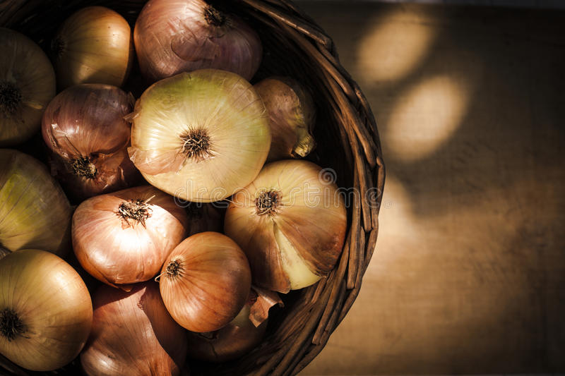 Onion Basket Royalty Free Stock Photo