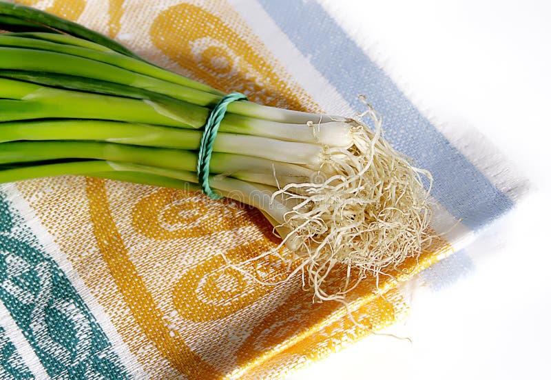 Download Onion on cotton napkin stock photo. Image of orange, food - 18371872