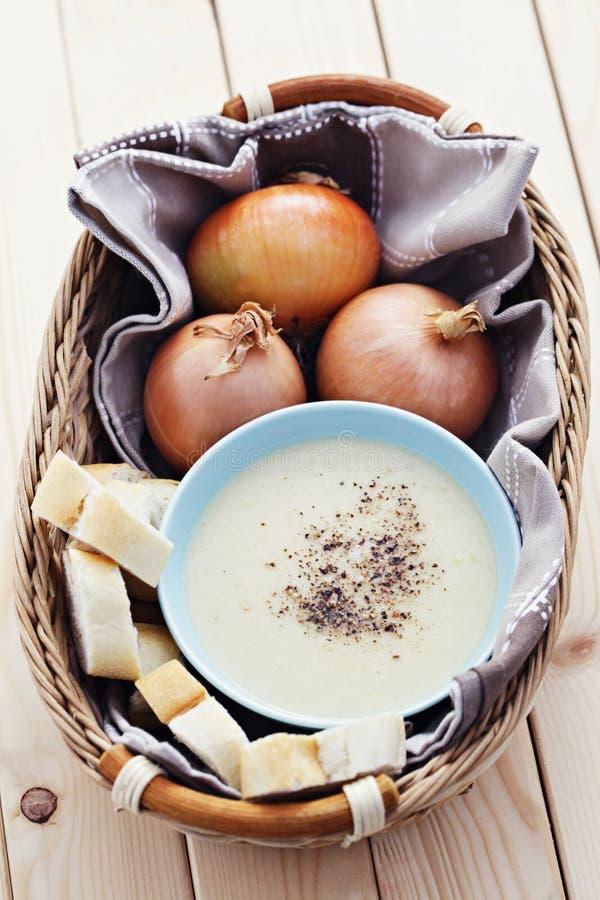 Onion cream royalty free stock image