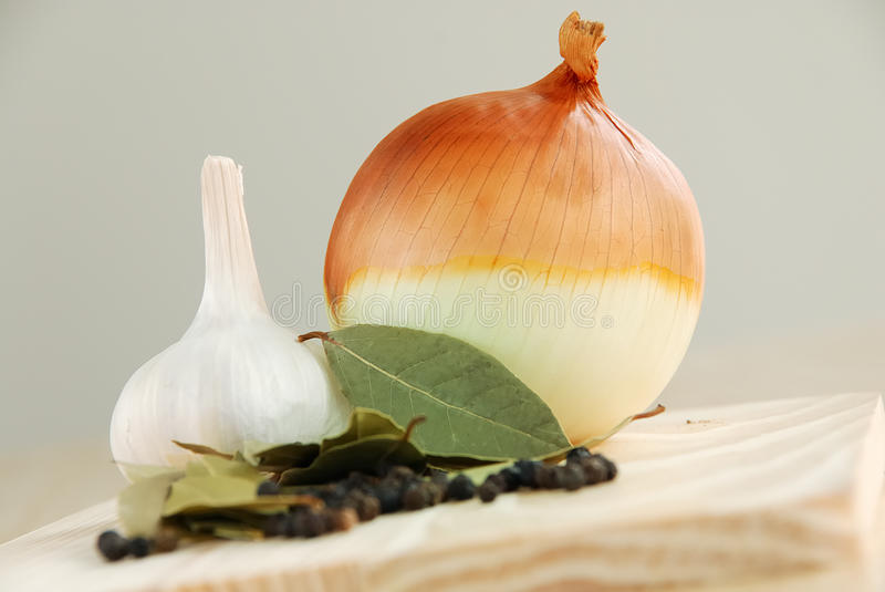 Download Onion and herbs stock photo. Image of ingredient, vegetable - 10934988