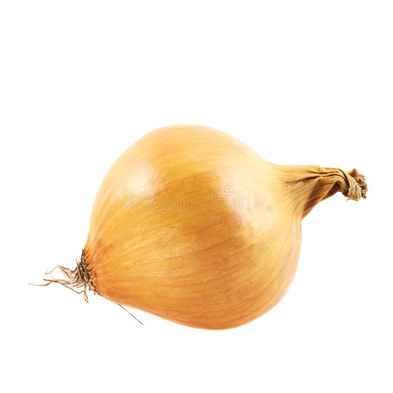 Onion isolated. Over white background royalty free stock photo