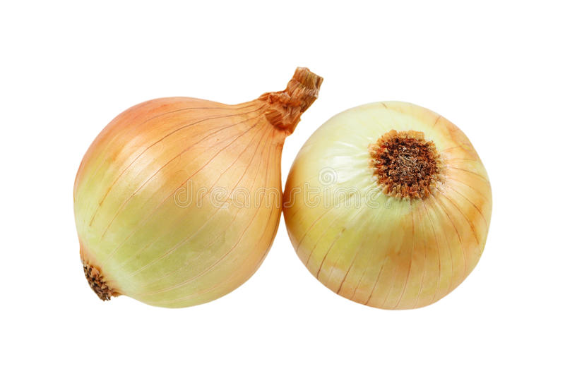 Onion isolated on white. It is onion isolated on white stock photo
