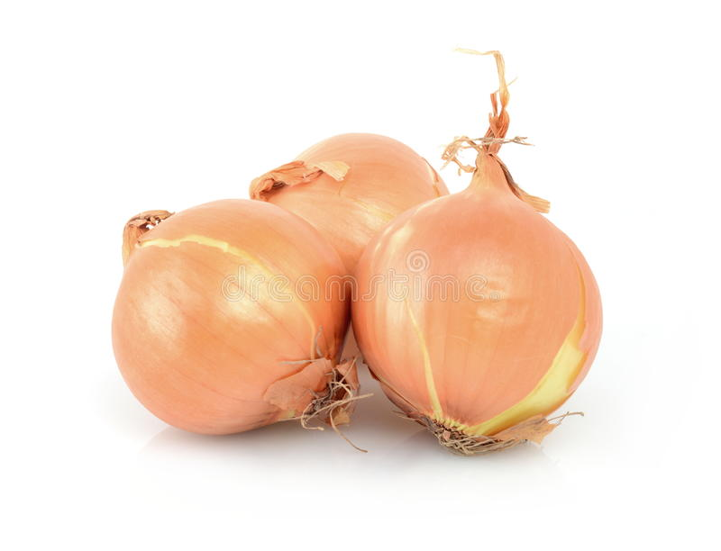 Onion isolated on white. Studio shot of three bulbs of onion isolated on white stock photo