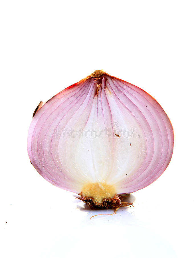 Download Onion layers stock image. Image of half, layers, detail - 20181487