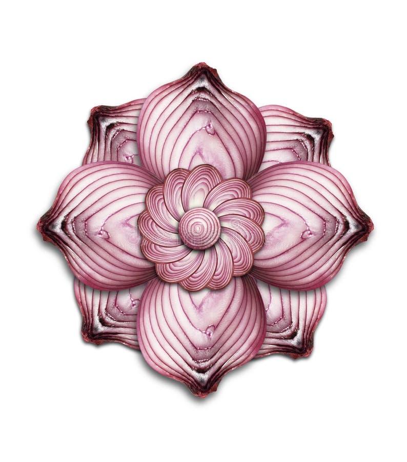 Onion mandala royalty free stock images