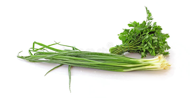 Onion and parsley stock photo