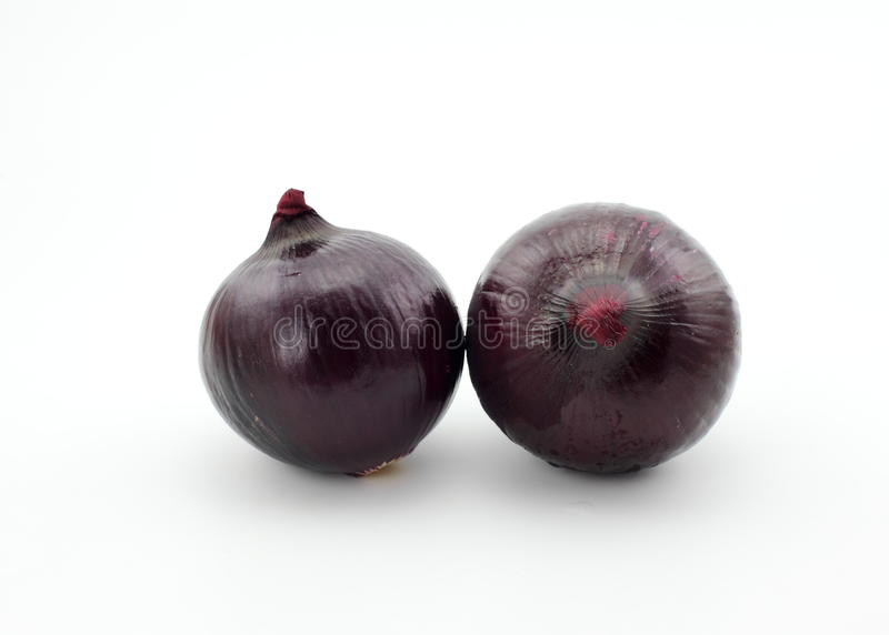 Onion. The picture is an onion, it is produced in the south of China, which is originated from Southeast Asia. Onions are widely distributed in China, and all royalty free stock photography