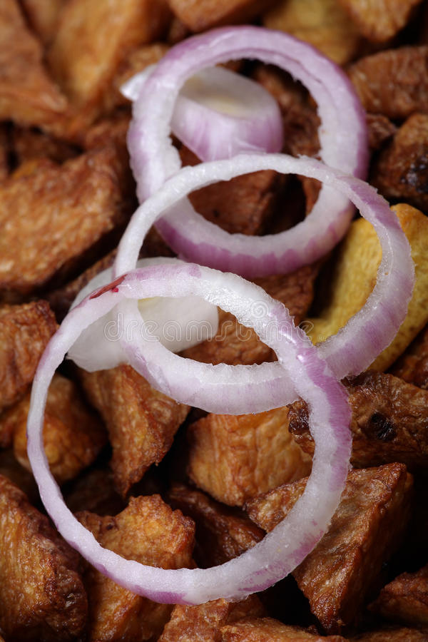 Download Onion rings stock photo. Image of onion, food, pieces - 18014532