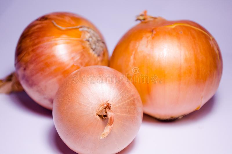 Onion. Root vegetable. Bulbs. Three onions. Bulbs on a white background. Onion on a white background. Orange on white. Ripe onion. royalty free stock photography