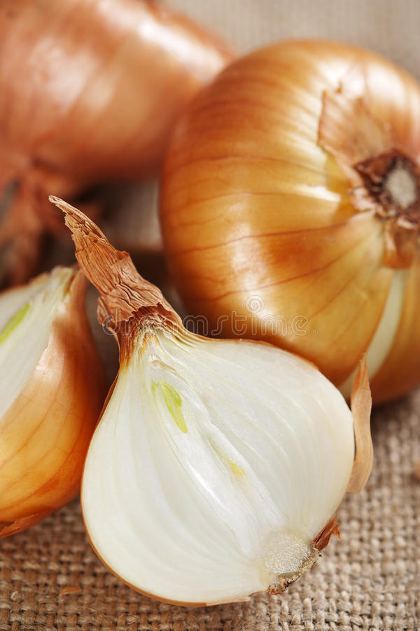 Onion on sacking. Close up of harvested onion on sacking royalty free stock photography